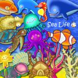 Cartoon Sealife Underwater Ocean ClipArt