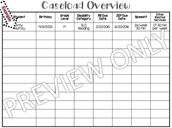 Caseload Organizer for Special Educators (editable!)