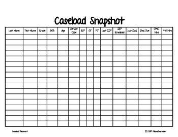 Caseload Snapshot