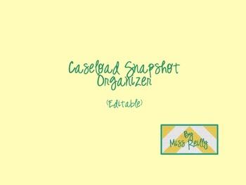 Caseload Snapshot Organizer