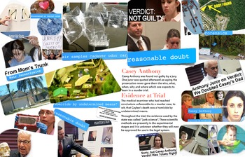 Casey Anthony Trial - Junk Evidence & Reasonable Doubt - FREE POSTER