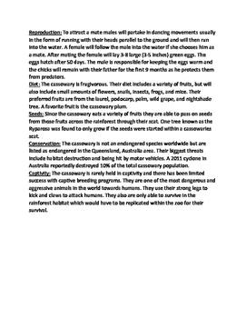 Cassowary - bird endangered informational article facts questions