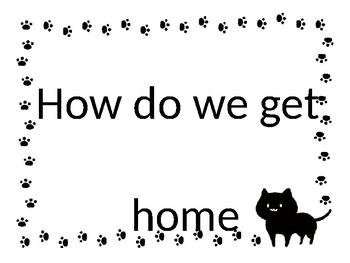 Cat Classroom Theme