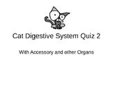 Cat Digestive System Identification Quiz
