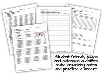 Cat Dissection - 3-D Paper Anatomy Model - Science Interactive Notebook