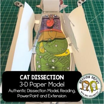 Cat Dissection - 3-D Paper Model