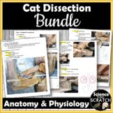 Cat Dissection Bundle - 32-page manual, quizzes, videos, & practicum!