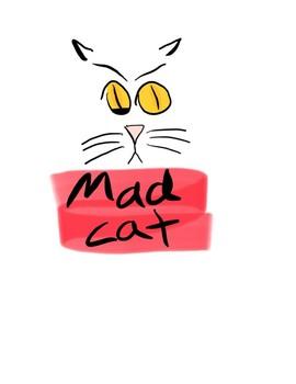 Cat Emotion Faces Starter