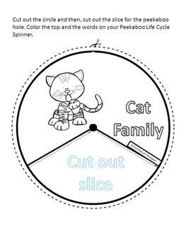 Cat Family: Animal (Spinner Wheel)