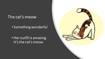 Cat Idioms PowerPoint
