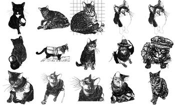 Cat Line Art Graphics Set 1