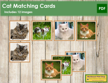 Cat Matching Cards