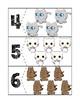 Cat Quantity Puzzles