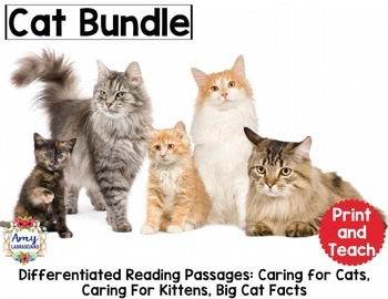 Cat Reading Bundle