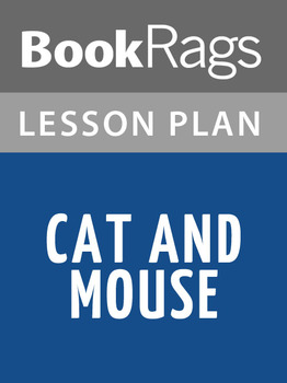 Cat and Mouse Lesson Plans