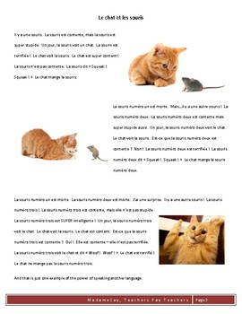 Cat and Mouse TPRS script