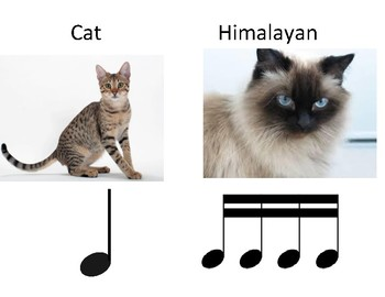 Cat rhythms for dictation and drumming