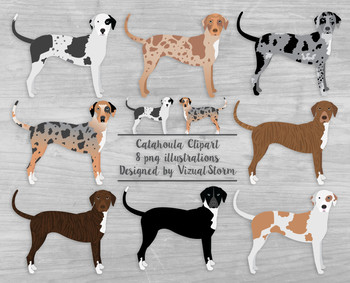 Catahoula Leopard Dogs - 8 Hand Drawn Herding Dog Illustrations
