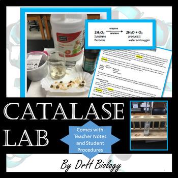 Catalase Lab