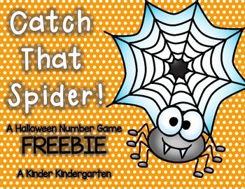 Catch That Spider!