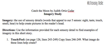 Catch The Moon Imagery Study