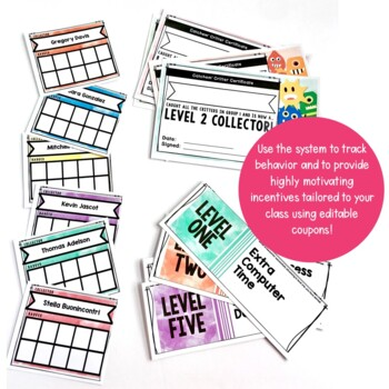 Positive Behavior Management: Catchem' Critter System