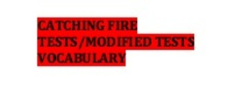 Catching Fire Section Tests/Modified Tests/Vocabulary