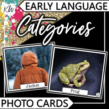 Categories Speech Therapy Flashcards