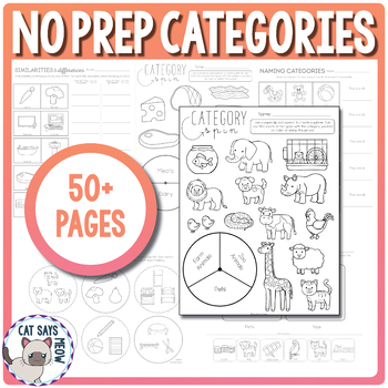 Categories No Prep Worksheets, Homework, What doesn't belo