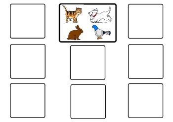Categories- Task Cards
