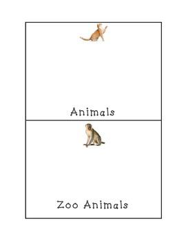 Categories Vocabulary Bundle