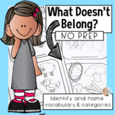 Categories for Speech Therapy: What Doesn't Belong?