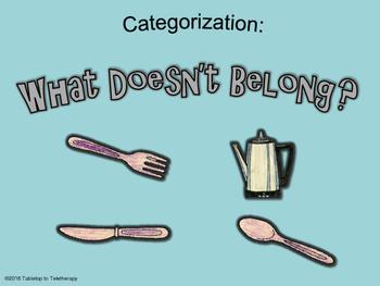 Categorization: What Doesn't Belong?