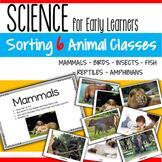 Categorizing 6 Animal Classes - Mammals Birds Insects Fish Reptiles & Amphibians