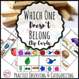 Categorizing Clip Cards Center Activity