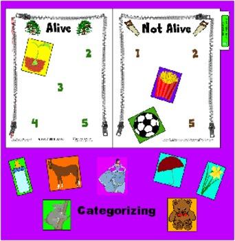 Categorizing - Alive and Not Alive - File Folder Board Activity