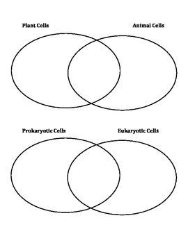 Categorizing Cells (Cloze-Style Notes, Accompanying Prezi, Worksheets, Test)
