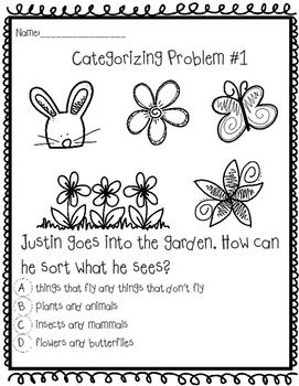 Categorizing Problems