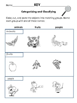 Categorizing and Classifying: Animals, Fruit, People
