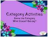 Category Activities: Name the Category and What Doesn't Belong