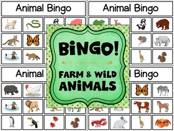 Category Bingo: Animal Flashcards & Games -- $2 DEAL