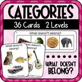 Category Cards with Photos 'What doesn't belong?' (Special Education)