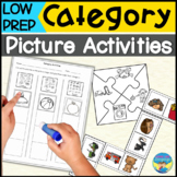 Category Sorting | Print and Go Picture Worksheets | Low Prep Activities