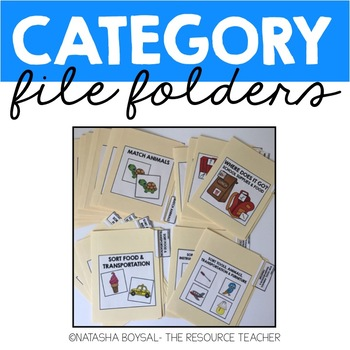 Category File Folder (Match and Sort)