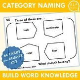 Category Naming Activity for Speech Therapy