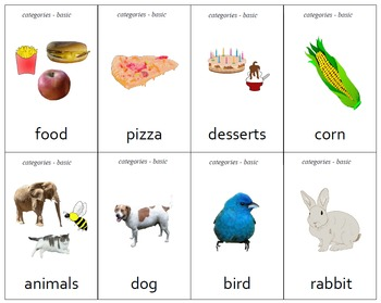 """""""Different"""" Category Practice Cards - Set of 80"""