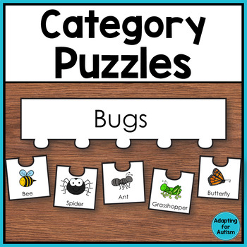 Category Sorting Work Task - Classifying Items by Group