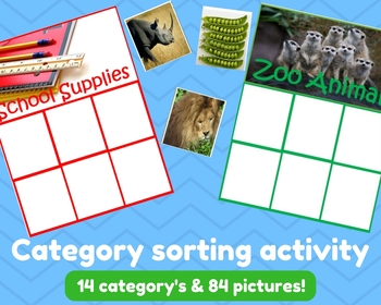 Category Sorting Activity for Special Ed Autism and Young Learners