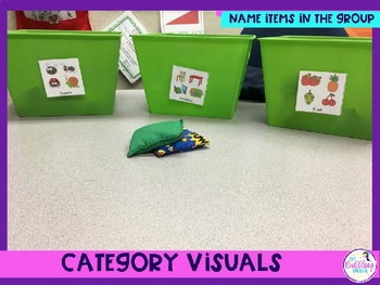 Category Visuals To Build Vocabulary