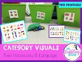 Category Visuals To Build Vocabulary